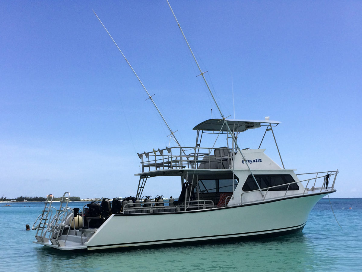 42 ft Newton 42 Fishing And Diving Boat